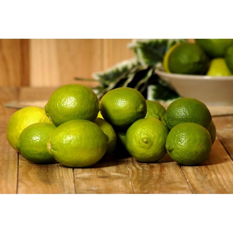 Citron vert Lime (500 gr)