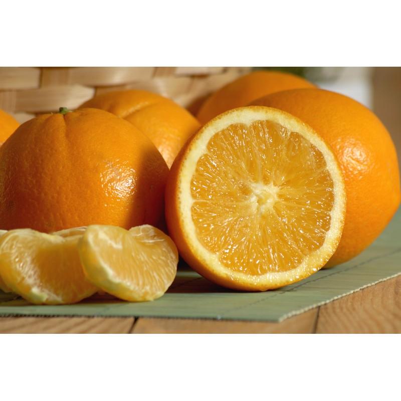 Orange à jus (500gr)