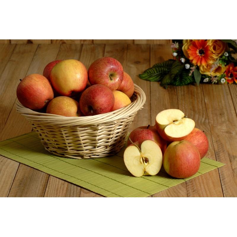 Pommes pinova corail (le kilo)