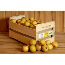 Pomme Belchard Chanteclerc (500 grs)