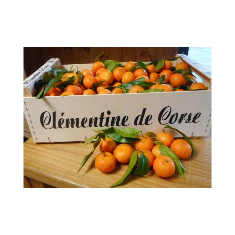 Clémentine Caffin Corse (500 g)