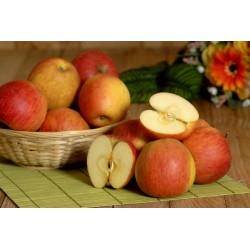 Pomme Renoir (500g)