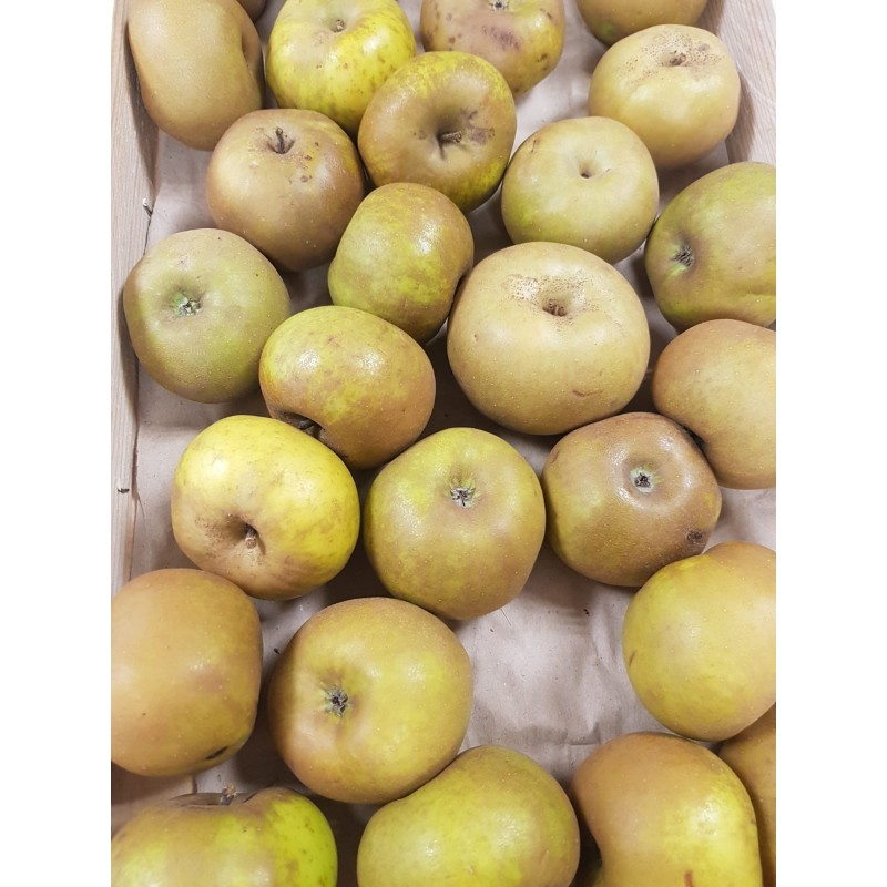 Pomme Canada Grise (500g)