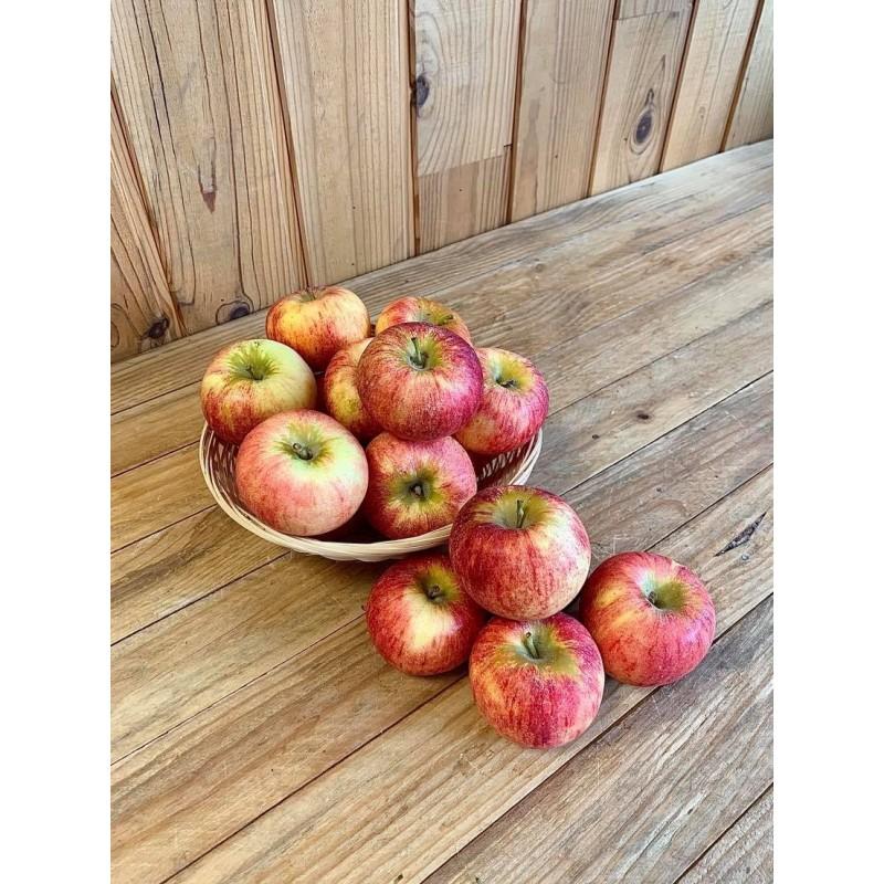 Pomme bicolore Gaïa (500 grs)