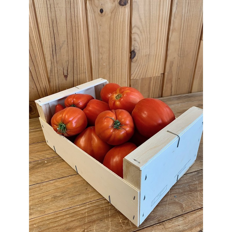 Tomate Allongée (500 g)